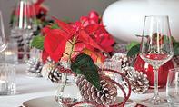 Weihnachtsstern-Deko basteln