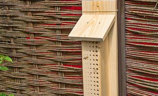 Bienenhotel bauen