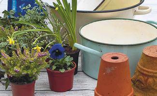 Upcycling-Idee für Blumenampel