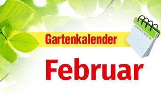 Gartenkalender Februar