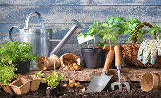 Sind Sie bereit für die Gartensaison?