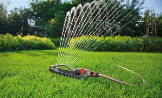Verhelfen diese Tricks zum perfekten Rasen?