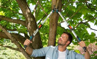 Mit dem passenden Werkzeug gelingt die Verjüngungskur Ihres Gartens ohne großen Kraftaufwand
