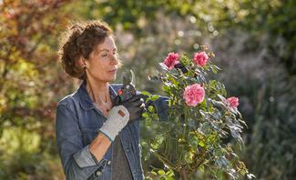 Zum Zurückschneiden von Bäumen und Büschen benötigen Sie unterschiedliche Gartenscheren. GARDENA hat für jeden Bedarf das passende Werkzeug