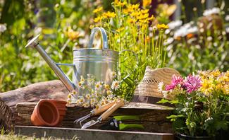 Garten-Oase: Tipps zum Wohlfühlen im sommerlichen Grün