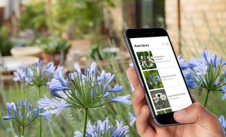 Pflanzen-App