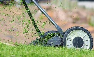 Rasenpflege in Frühling