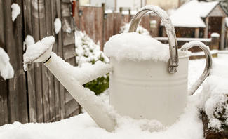 Ist Schnee als Gießwasser eine Alternative zu Regenwasser?