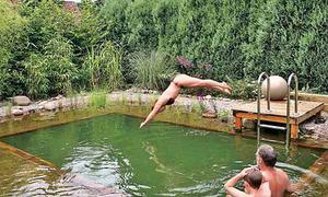Schwimmteich selber bauen