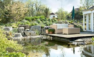 Tipps zur Teich-Reinigung