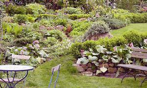 Tipps zur Gartengestaltung