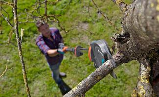 Mit dem Baumschneider kürzen Sie Äste in luftiger Höhe, während Sie selbst am Boden bleiben können,