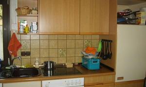 die alte Küchenzeile auf der langen Seite