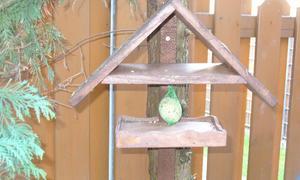 vogelhaus selber bauen archiv seite 1. Black Bedroom Furniture Sets. Home Design Ideas