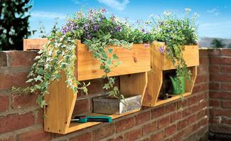 Blumen auf dem Balkon: Nachbarn können Einspruch erheben!