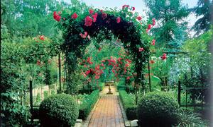 Gartengestaltung Selber Machen Selbst De
