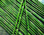 Asiatische tischdeko - Tischdeko bambus ...