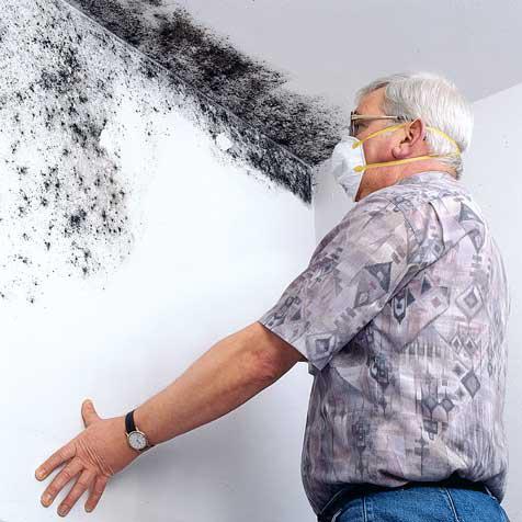 schimmel im bad entfernen wand finest schimmel an der tapetenwand und fuleiste in der ecke. Black Bedroom Furniture Sets. Home Design Ideas