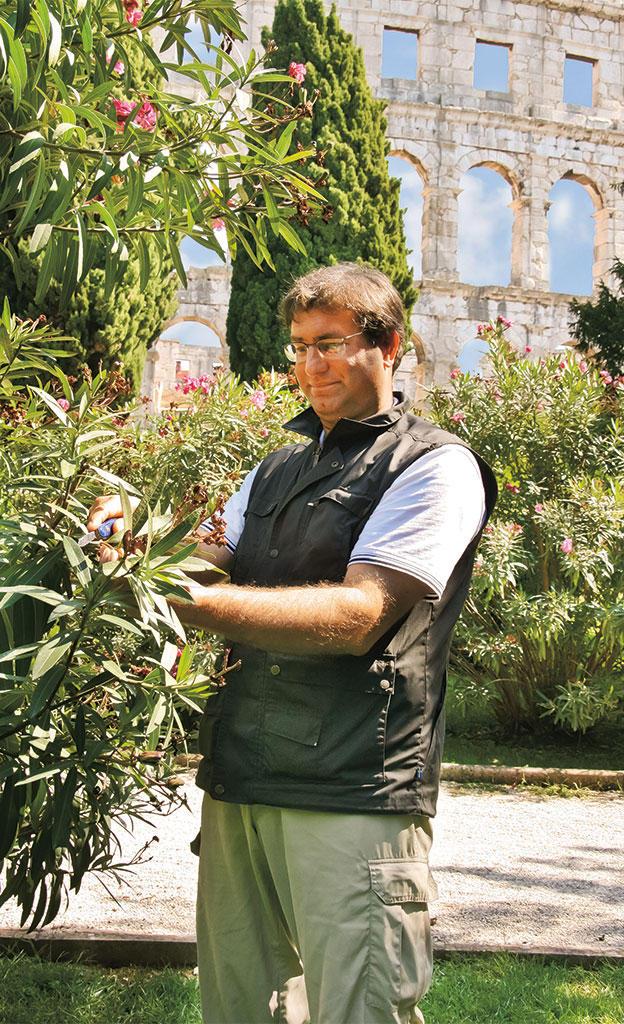 Pflanzen als Urlaubs-Souvenir