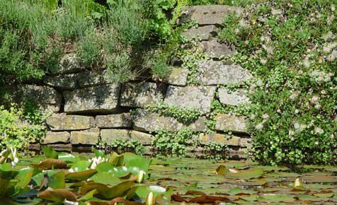 Steingarten - Gartenwege gestalten naturstein ...
