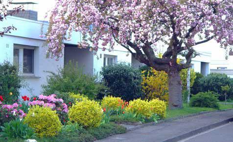 ... Je Kleiner Die Zur Verfügung Stehende Fläche, Desto Transparenter  Sollte Die Begrenzung Sein, Damit Der Garten Optisch Nicht Weiter  Verkleinert Wird.