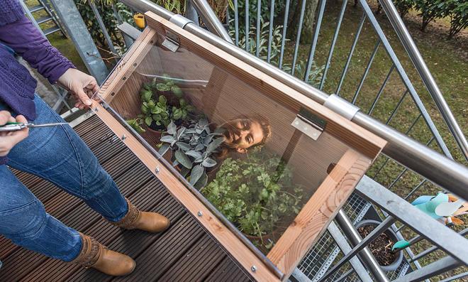 Balkon-Frühbeetkasten