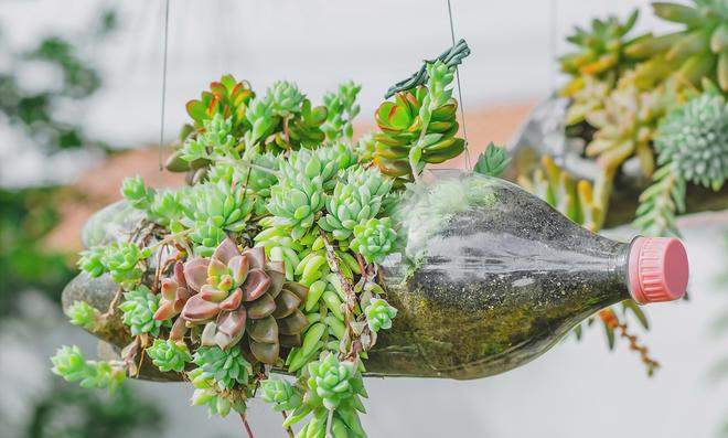 Blumentopf aus Plastikflasche
