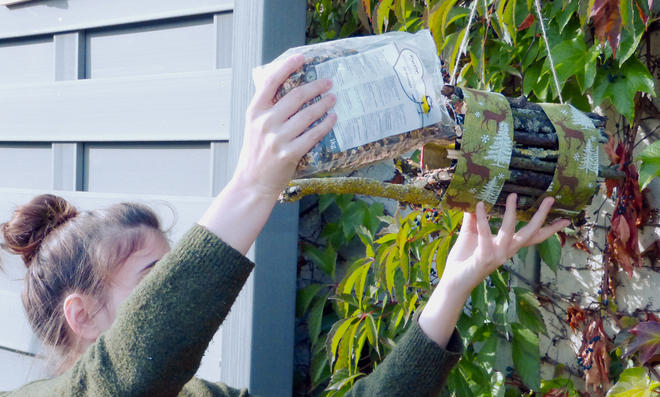 Futterstelle für Vögel selber bauen