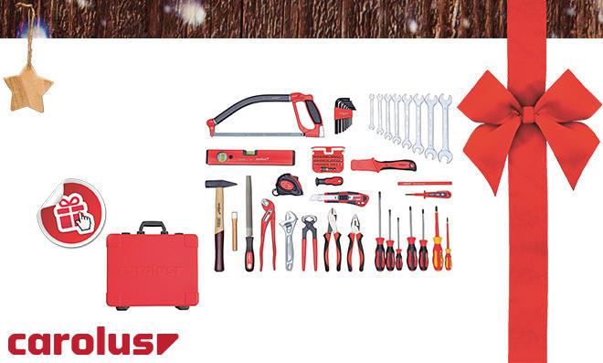 carolus Werkzeugkoffer inklusive Universalsatz BASIS, 70-teilig