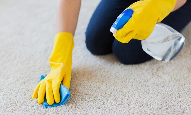 Teppich reinigen mit Teppichreiniger