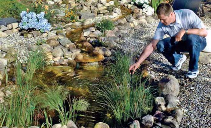 Great Teich Reinigen