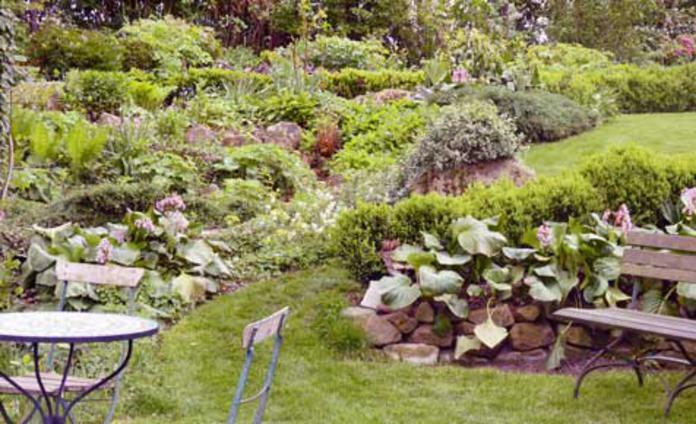 steingarten selbstde - Garten Hugel Anlegen
