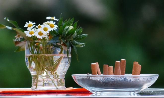 Rauchgeruch beseitigen