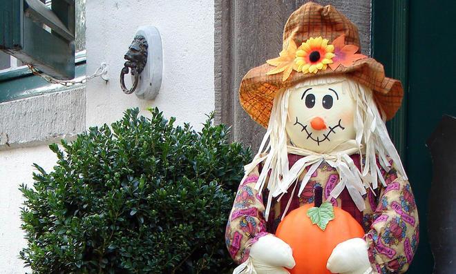 Halloween-Deko: Garten
