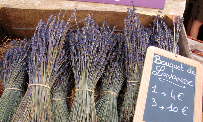 Prächtig Lavendel trocknen | selbst.de #UG_57
