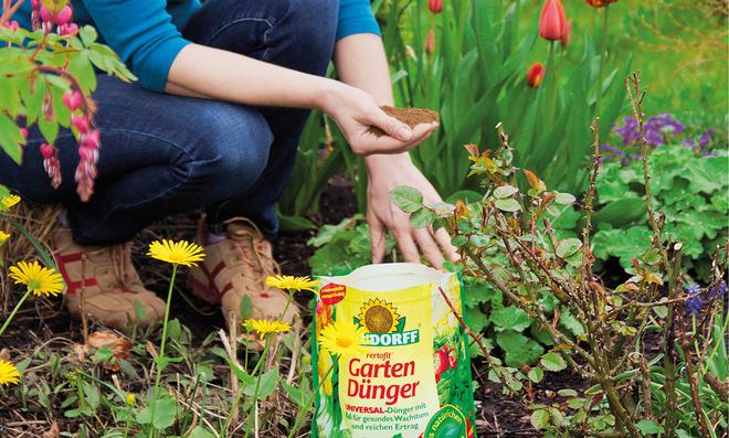 Frau gibt organischen Düngert von Neudorff ins Beet