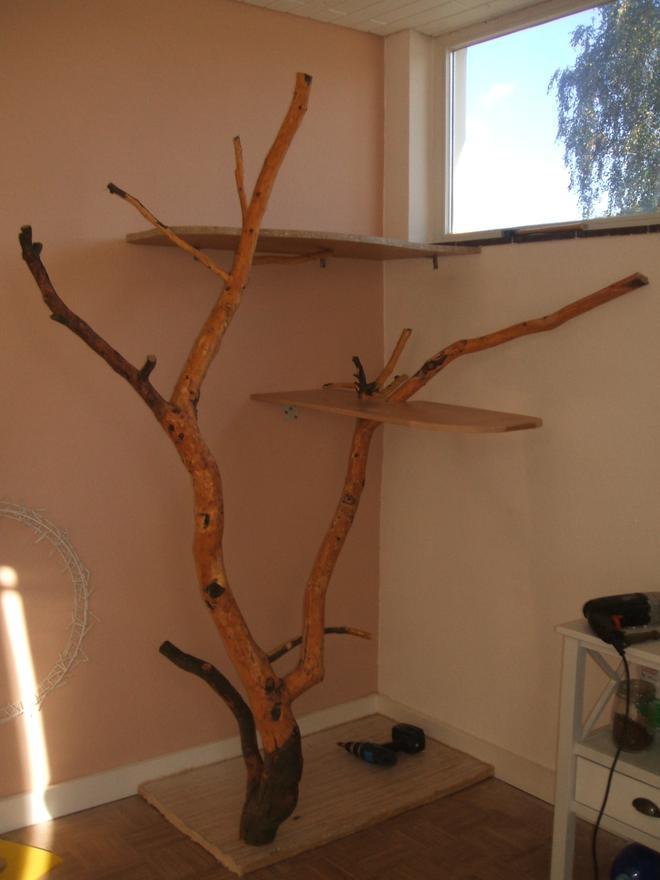 kratzbaum selbst gebaut trendy kratzbaum reserviert with. Black Bedroom Furniture Sets. Home Design Ideas