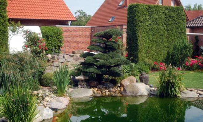 Japanischer Garten : Japanischer Garten Exotischen Pflanzen Wroclaw Polen