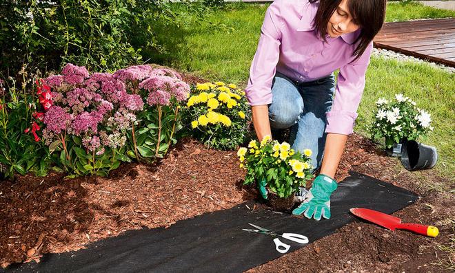 Pflanzenvlies verhindert Unkraut