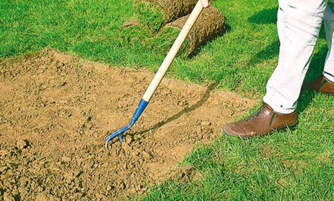 Rasen ausbessern