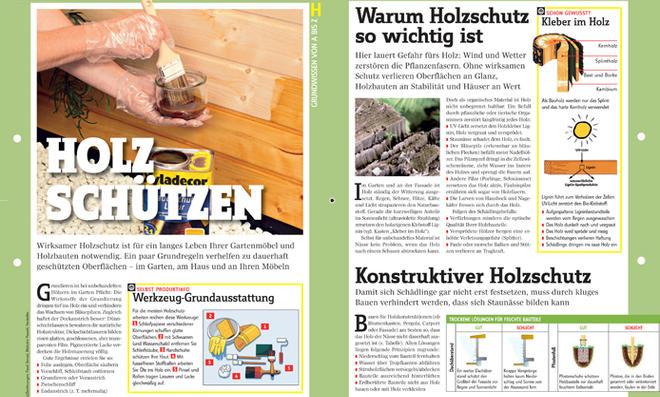 Grundwissen Holzschutz