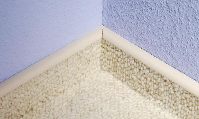 teppich zum verlegen korkboden verlegen auf teppich. Black Bedroom Furniture Sets. Home Design Ideas