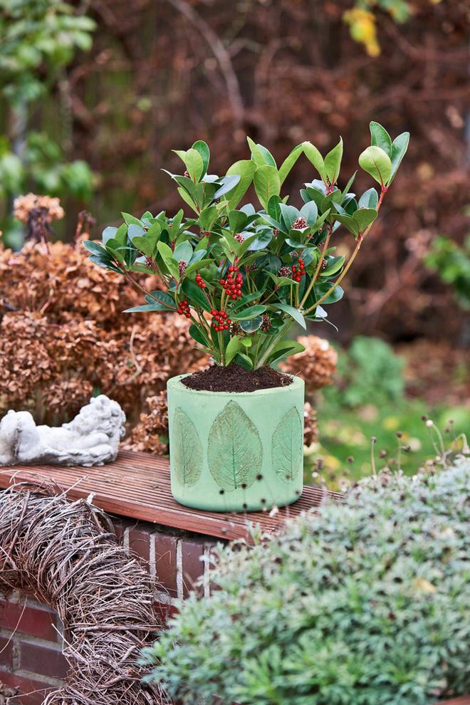 Blumentopf aus Beton gießen
