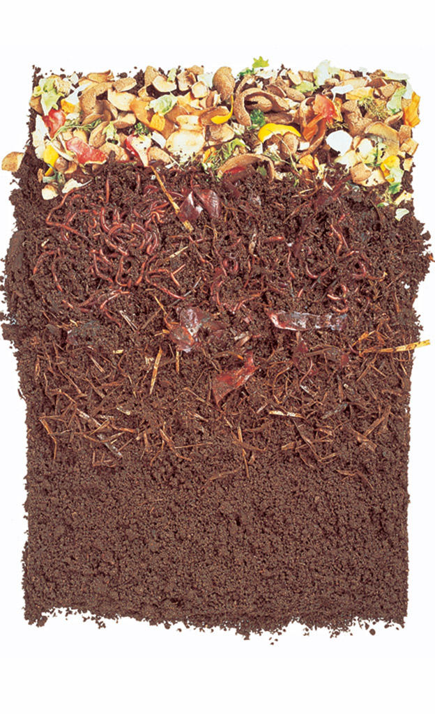 Kompost: Was darf darauf?