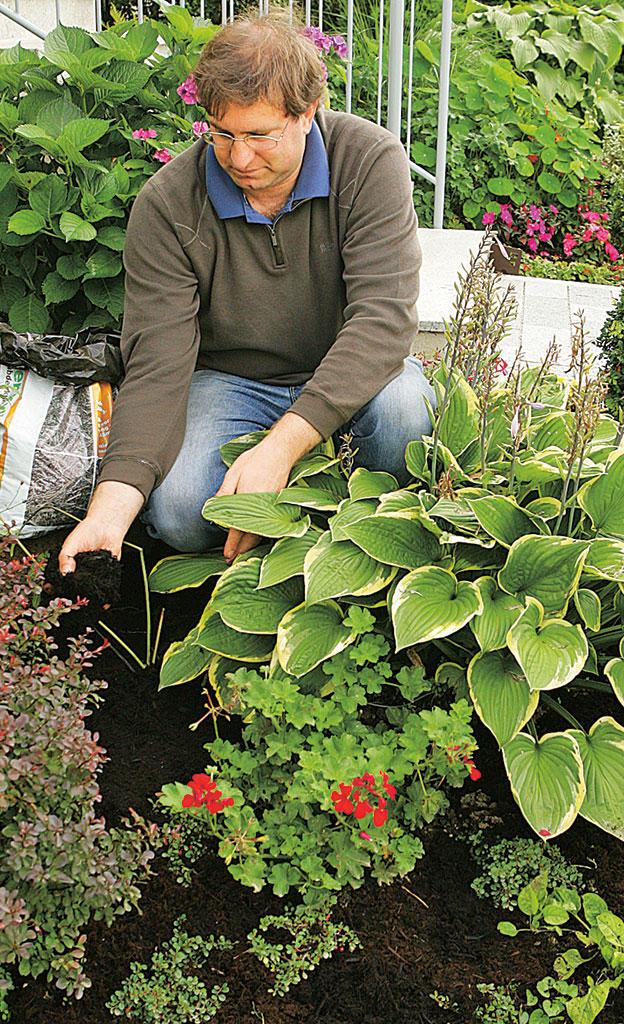 Mulch: Schutz für den Boden