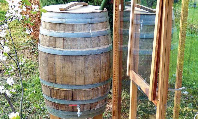 Fußboden Aus Weinfässern ~ Keller mit weinfässern stockfoto colourbox