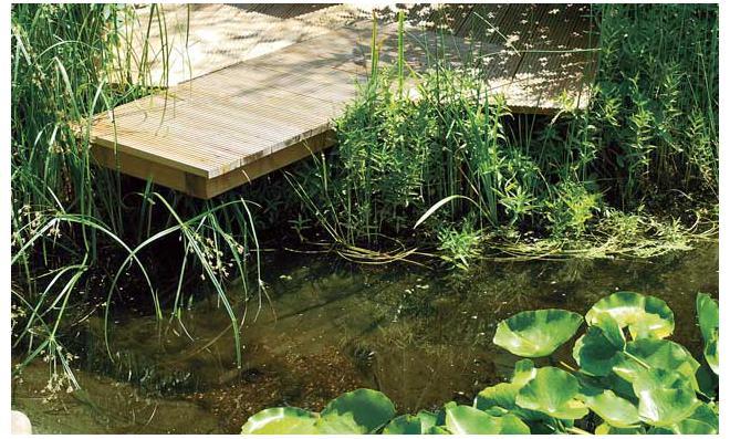 Teich-Steg bauen