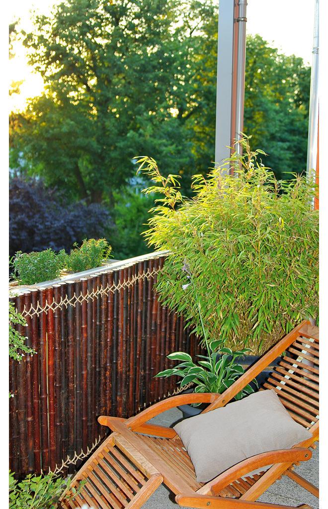 Uberlegen Bambus Sichtschutz Für Den Balkon