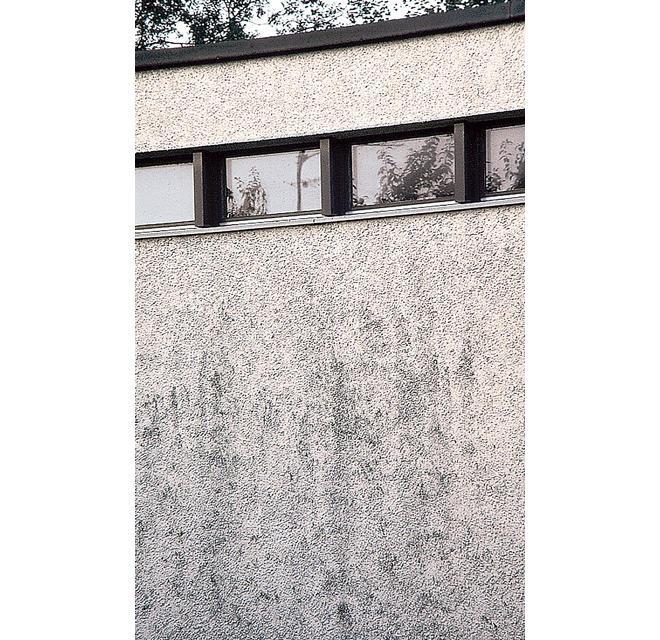 Verschmutzte Putz-Fassade
