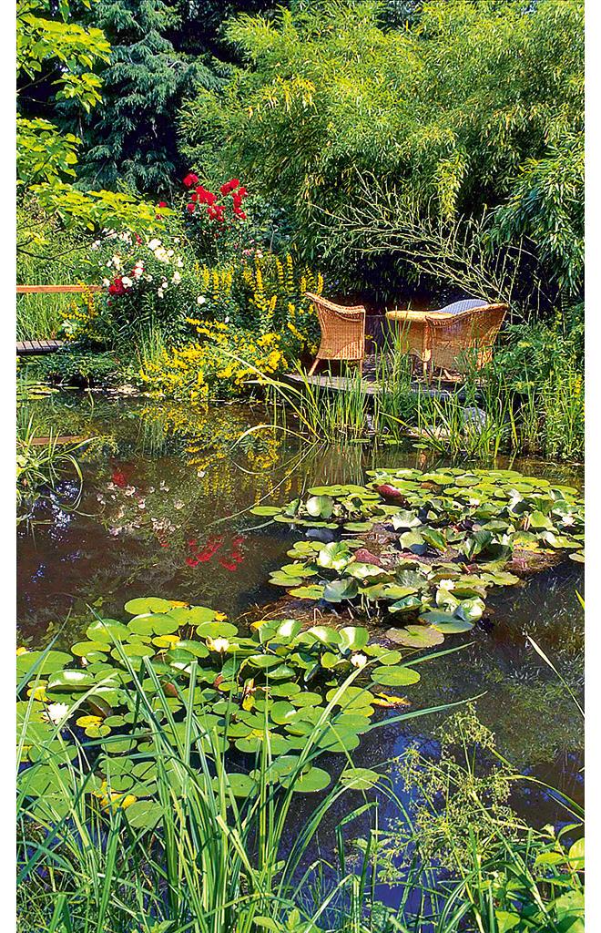 Gartenplanung | selbst.de